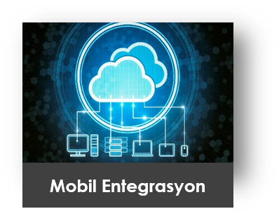 Mobil Entegrasyon